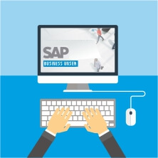 SAP Business User